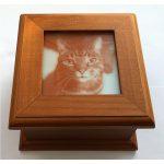 Cat Picture Box